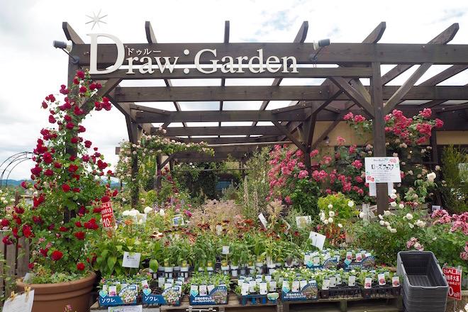 drawgarden